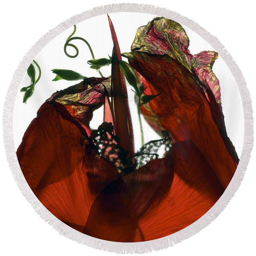 Flowers Round Beach Towel featuring the digital art Morning Glory Canna Red by Julia McLemore