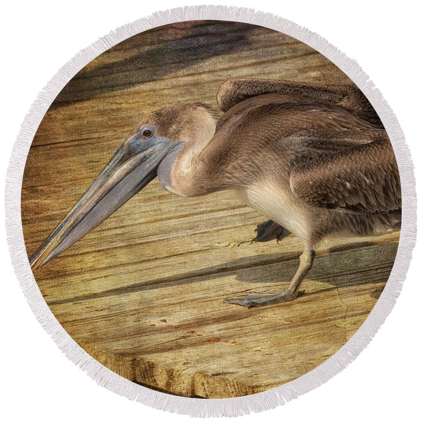 Pelican Round Beach Towel featuring the photograph Morning Stretch by Kim Hojnacki