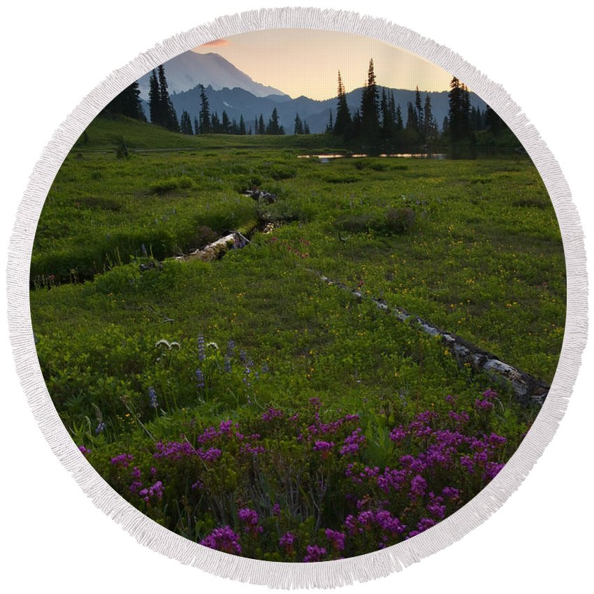 Rainier Round Beach Towel featuring the photograph Mountain Heather Sunset by Mike Dawson