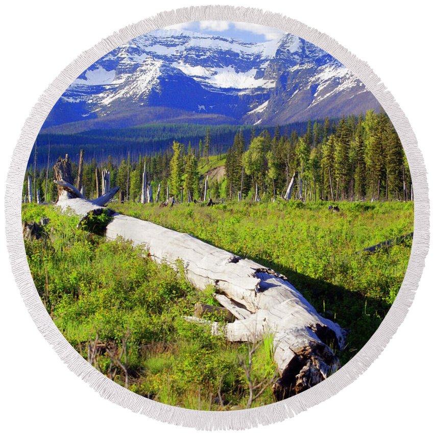 Mountain Round Beach Towel featuring the photograph Mountain Splendor by Marty Koch