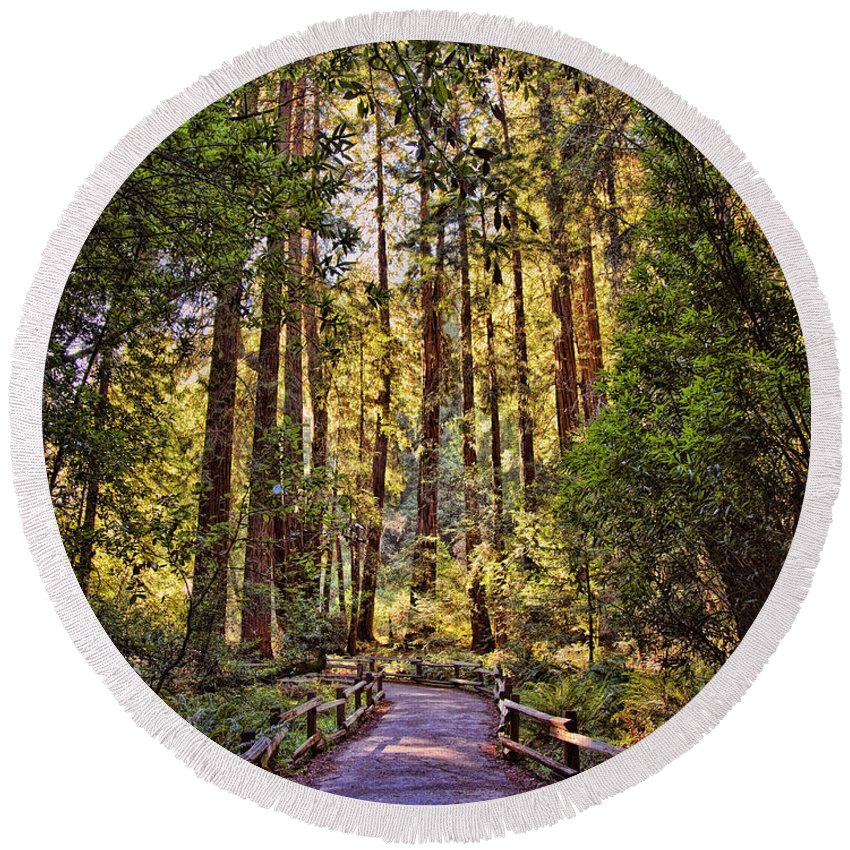 Muir Woods Round Beach Towel featuring the photograph Muir Woods by Diana Powell