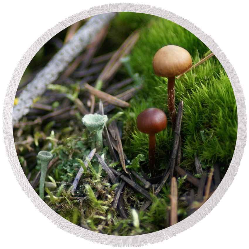 Nature Round Beach Towel featuring the photograph Mushroom Tundra by Ben Upham III