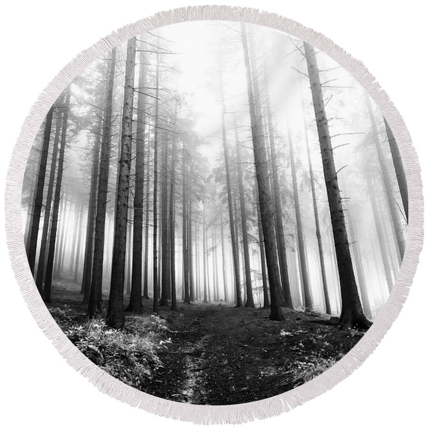 Bleak Round Beach Towel featuring the photograph Mysterious Forest by Michal Boubin