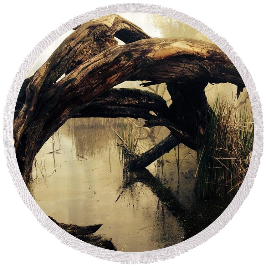 Mysterious Marsh Round Beach Towel featuring the photograph Mysterious Marsh by Gallery Of Modern Art
