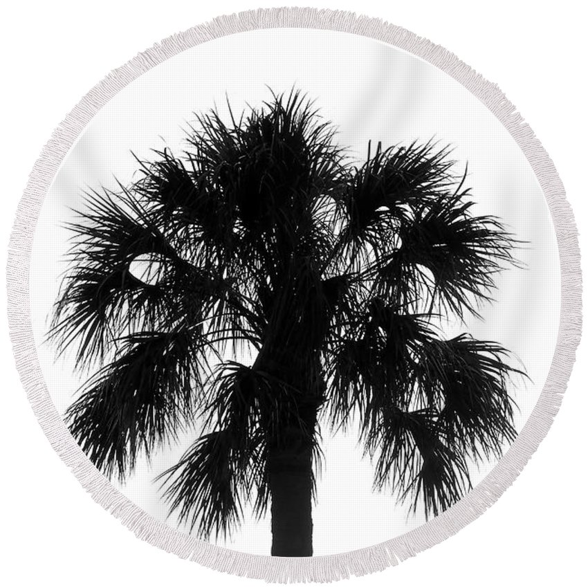 Palm Tree Round Beach Towel featuring the photograph Naked Palm by David Lee Thompson