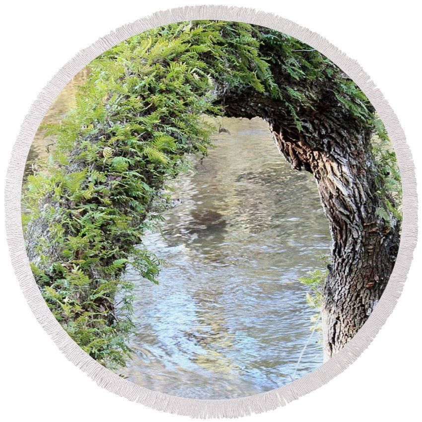 Florida Landscape Round Beach Towel featuring the photograph Natural Archway Over Hillsborough River by Carol Groenen