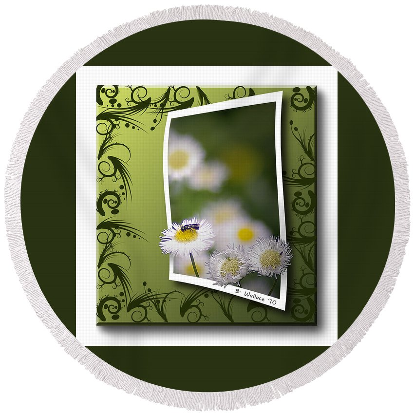 2d Round Beach Towel featuring the photograph Nature Bug by Brian Wallace
