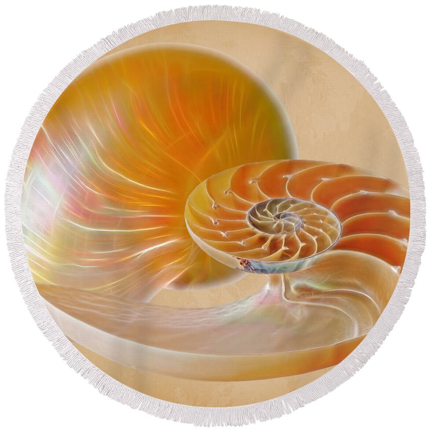 Nautilus Shell Round Beach Towel featuring the photograph Nautilus Golden Glow by Gill Billington