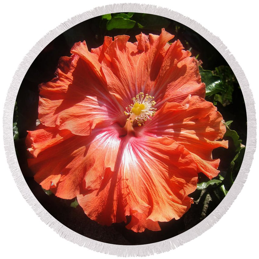 Hibiscus Round Beach Towel featuring the photograph Neon-red Hibiscus 6-17 by Sofia Metal Queen