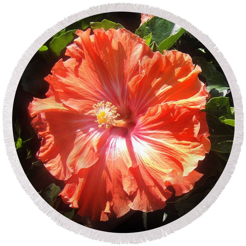 Hibiscus Round Beach Towel featuring the photograph Neon-red Hibiscus Flowers 6-17 by Sofia Metal Queen