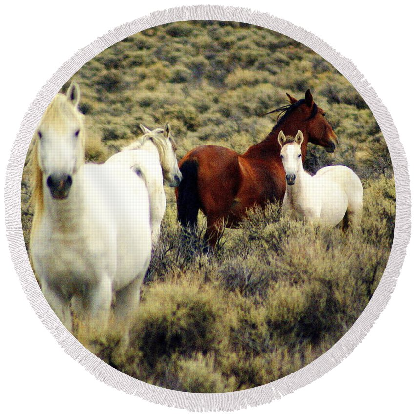 Horses Round Beach Towel featuring the photograph Nevada Wild Horses by Marty Koch