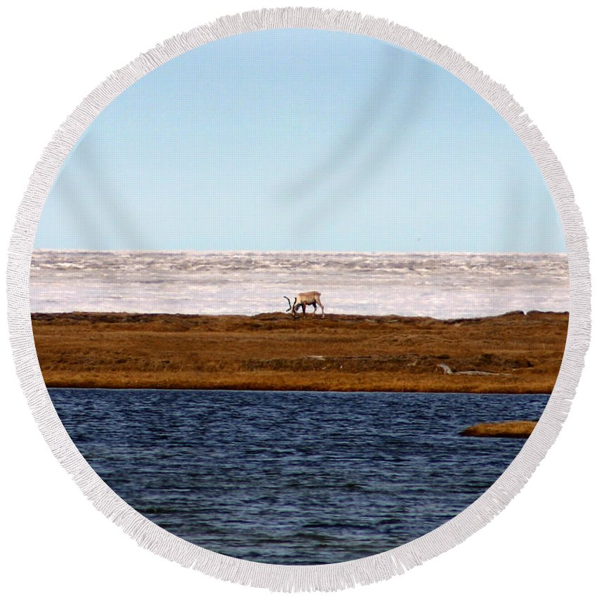 Arctic Round Beach Towel featuring the photograph North Slope by Anthony Jones