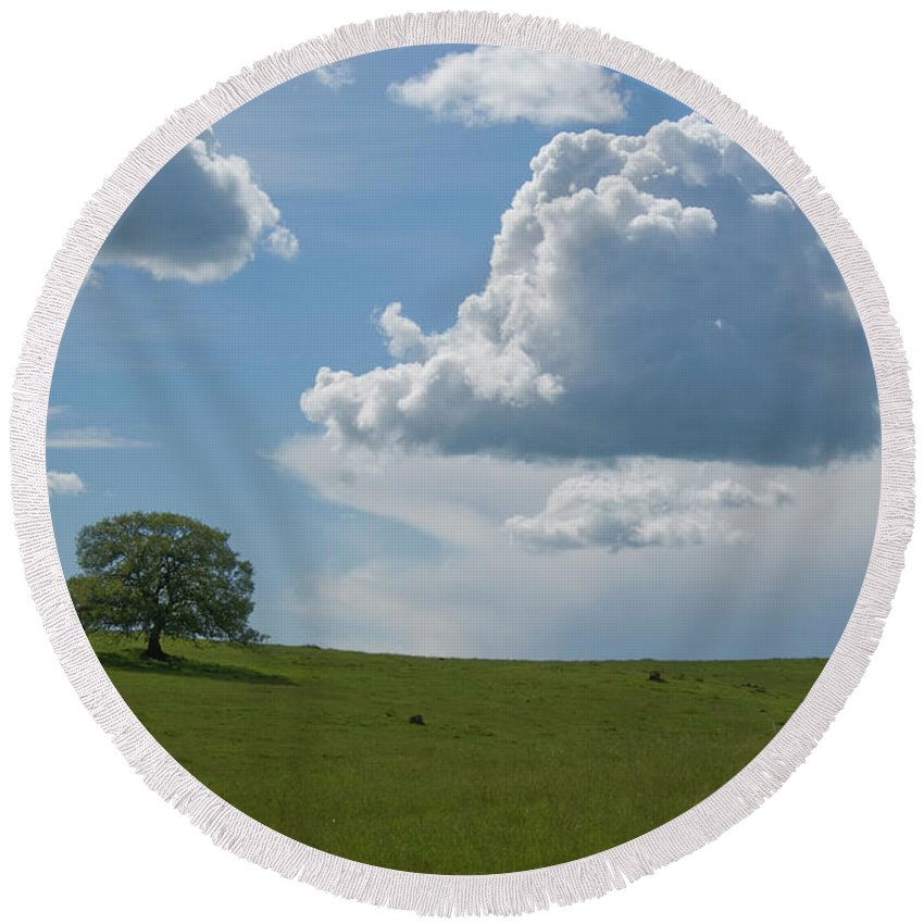 Oak Round Beach Towel featuring the photograph Oak After Storm by Jim And Emily Bush