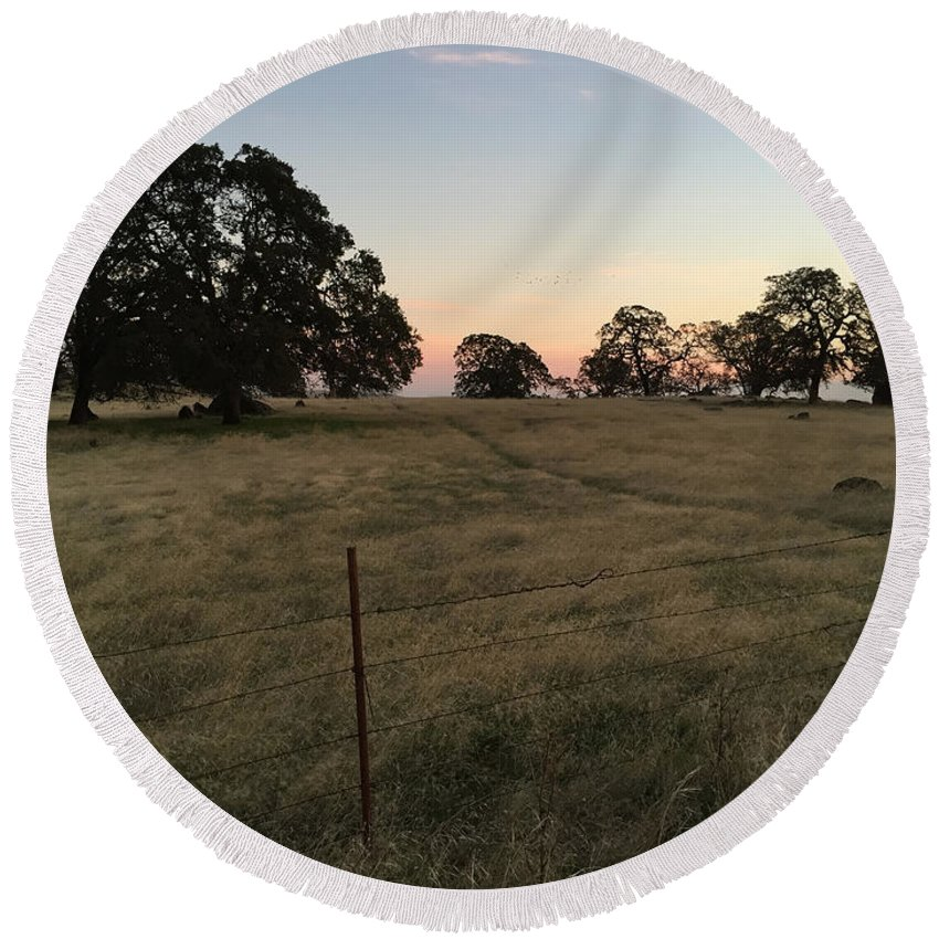 Sunset Round Beach Towel featuring the photograph Oaks At Dusk by Dani Keating