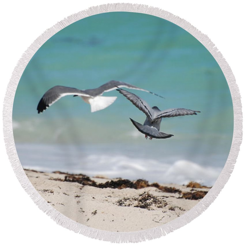 Sea Scape Round Beach Towel featuring the photograph Ocean Birds by Rob Hans