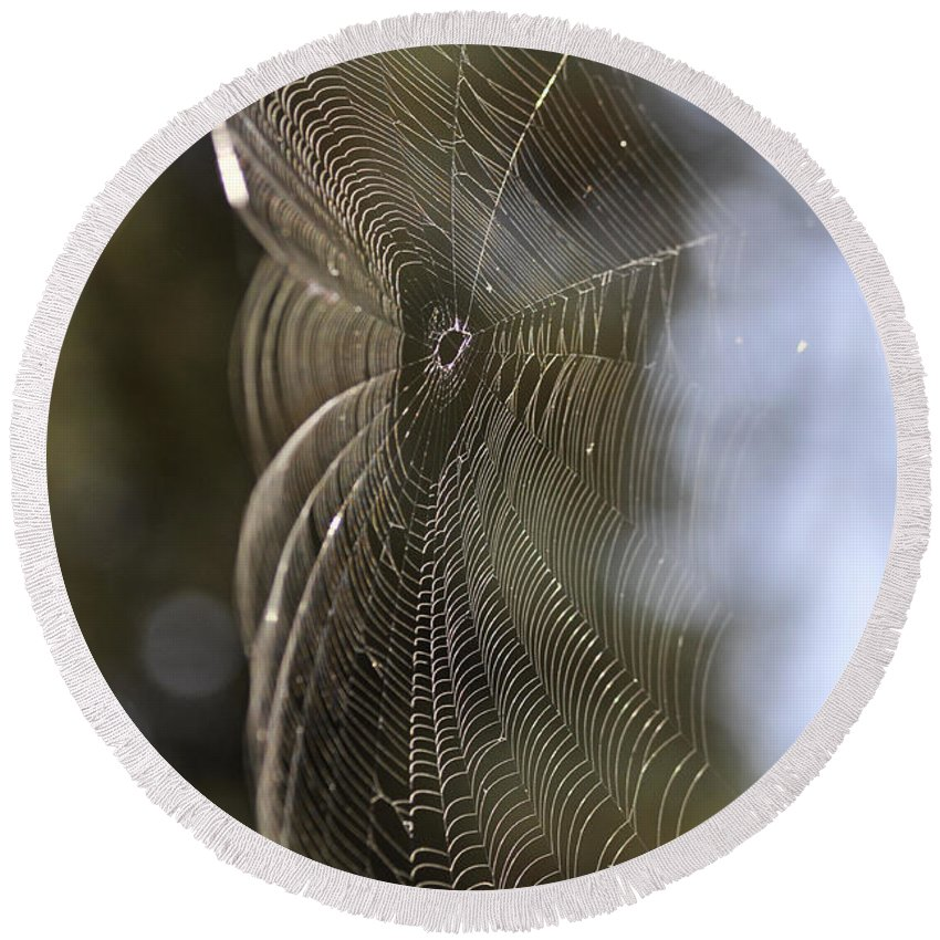 Clay Round Beach Towel featuring the photograph Oh What Webs We Weave by Clayton Bruster