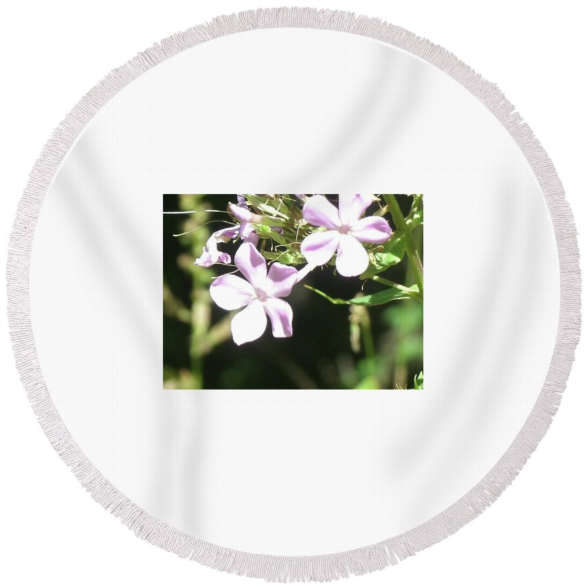 ee1d6ad64 Ohana Round Beach Towel featuring the digital art Ohana Means Family. Family  Means Nobody Gets