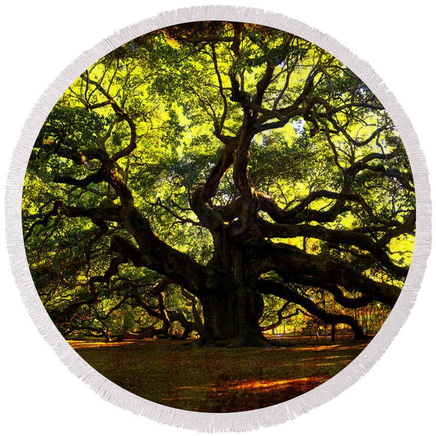 Angel Oak Round Beach Towel featuring the photograph Old Old Angel Oak In Charleston by Susanne Van Hulst