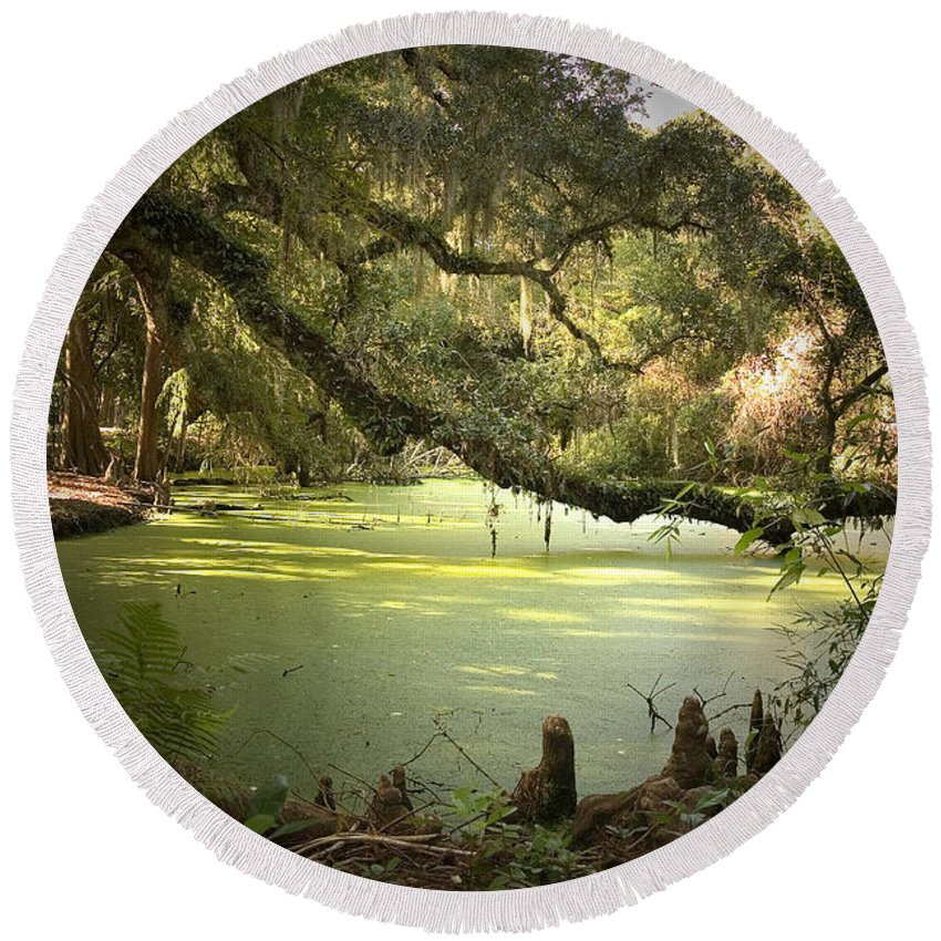 Swamp Round Beach Towel featuring the photograph On Swamp's Edge by Scott Pellegrin