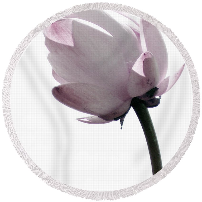 Lotus Round Beach Towel featuring the photograph On The Inside by Amanda Barcon