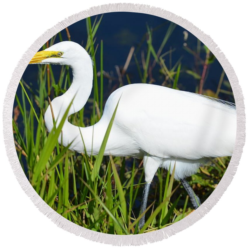 White Egret Round Beach Towel featuring the photograph On The Move by Tammy Mutka