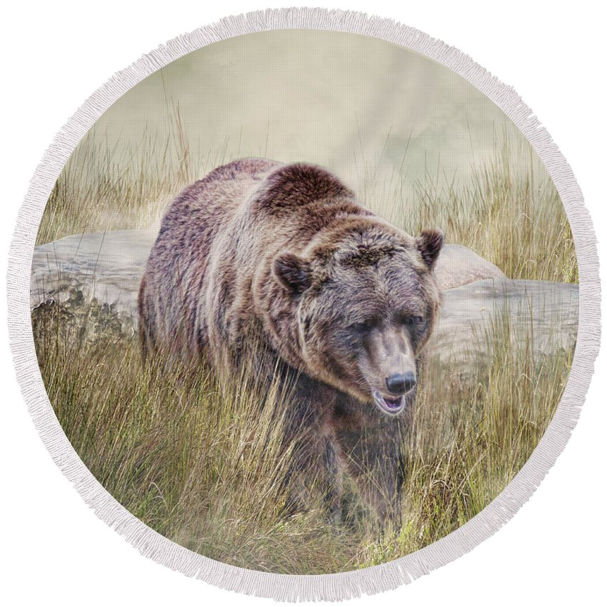 Bear Round Beach Towel featuring the photograph On The Prowl by Jan Galland