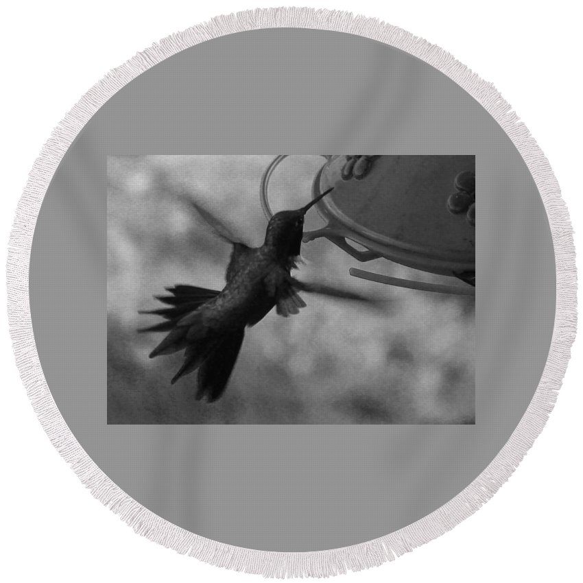 Hummingbird Round Beach Towel featuring the photograph On The Wings Of A Hummingbird by Samantha Burrow