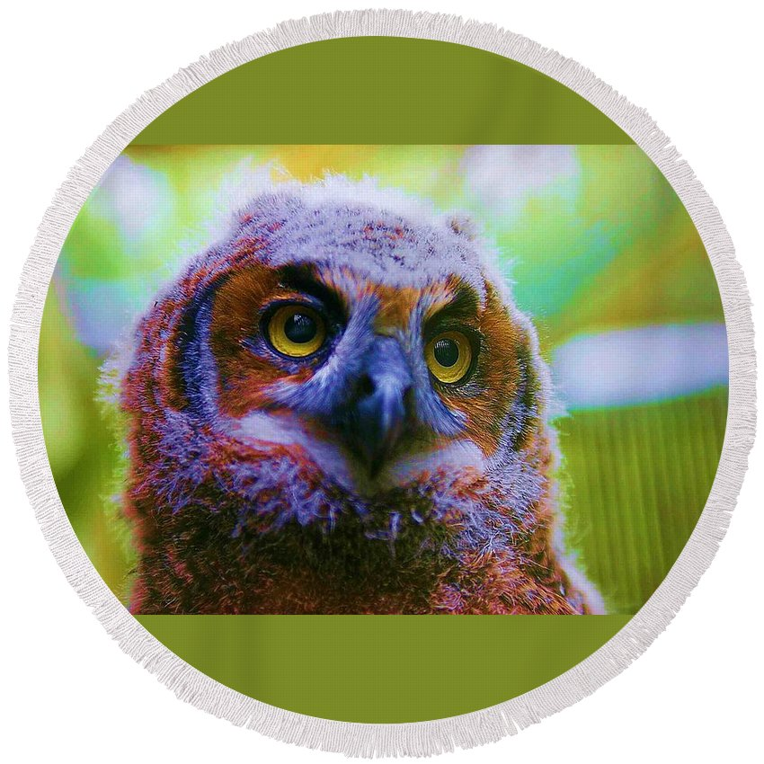 Owl Round Beach Towel featuring the photograph Opalescent Owl by Nelson Strong