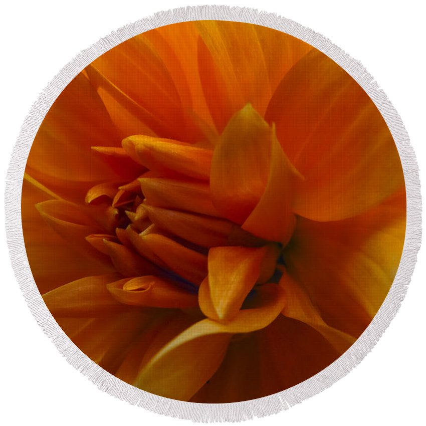 Photography Round Beach Towel featuring the photograph Orange Dahlia by Ignacio Leal Orozco