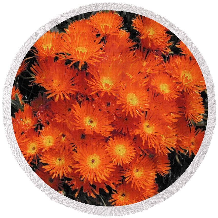 Flowers Round Beach Towel featuring the photograph Orange by Douglas Barnard