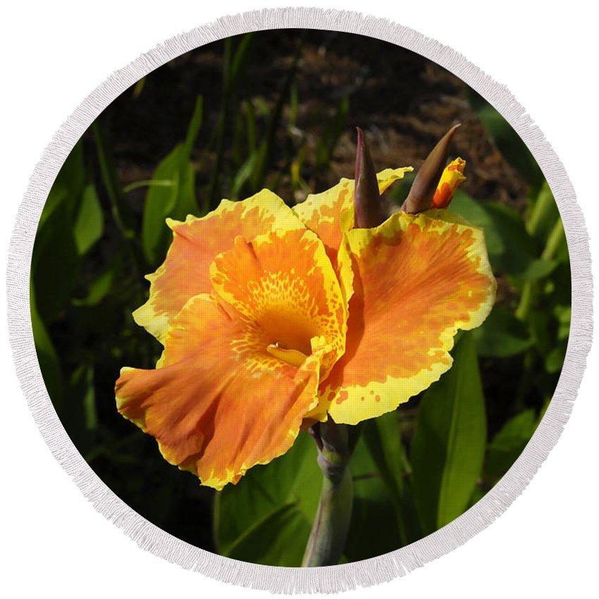 Flower Round Beach Towel featuring the photograph Orange Flower by David Lee Thompson