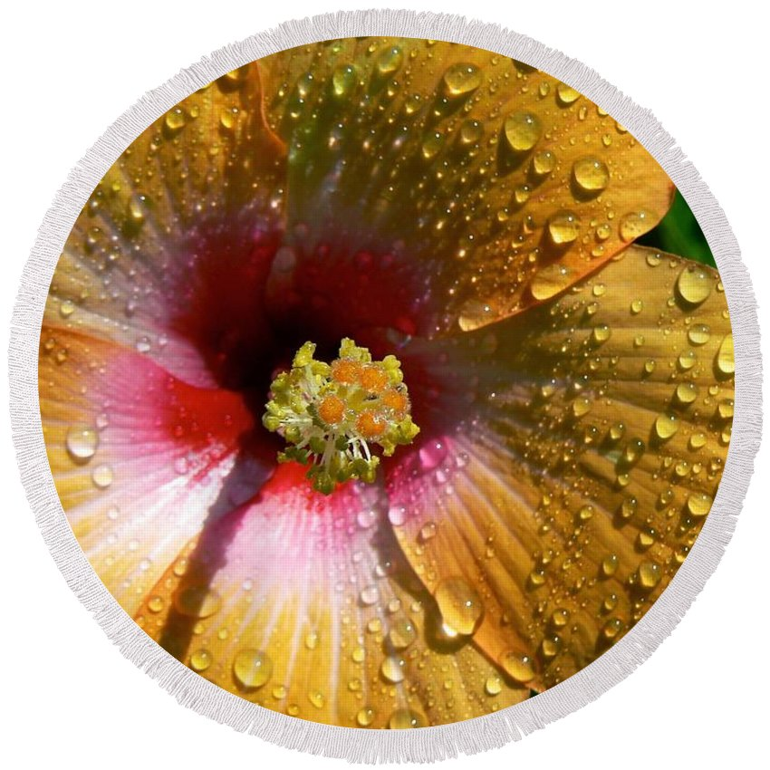 Flowers Round Beach Towel featuring the photograph Orange Hibiscus II With Water Droplets by Rincon Road Photography By Ben Petersen