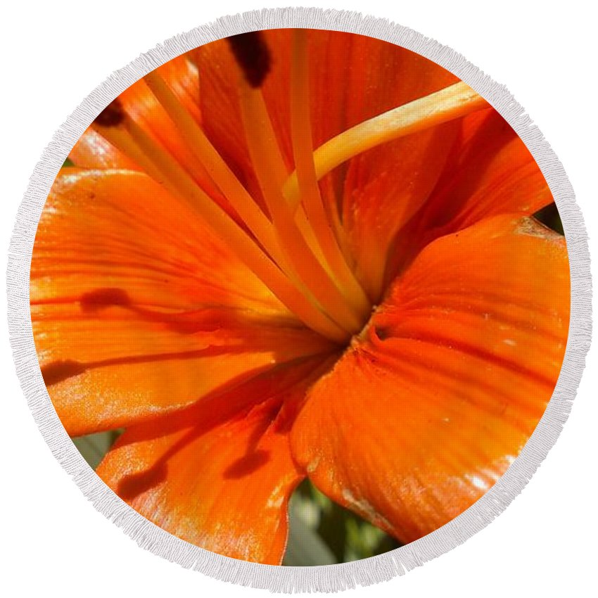 Orange Lily Round Beach Towel featuring the photograph Orange Lily by LKB Art and Photography
