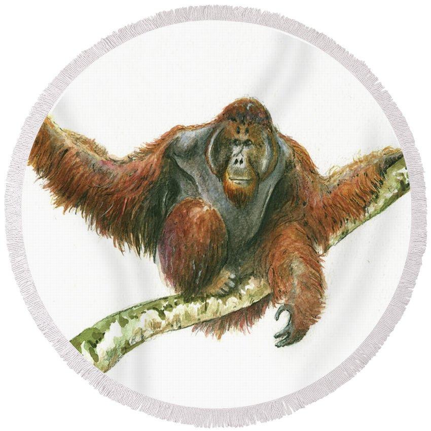 Orangutan Round Beach Towels