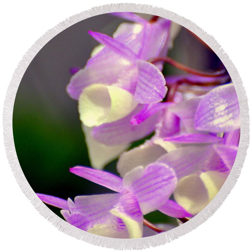 Orchid Round Beach Towel featuring the photograph Orchid 25 by Marty Koch