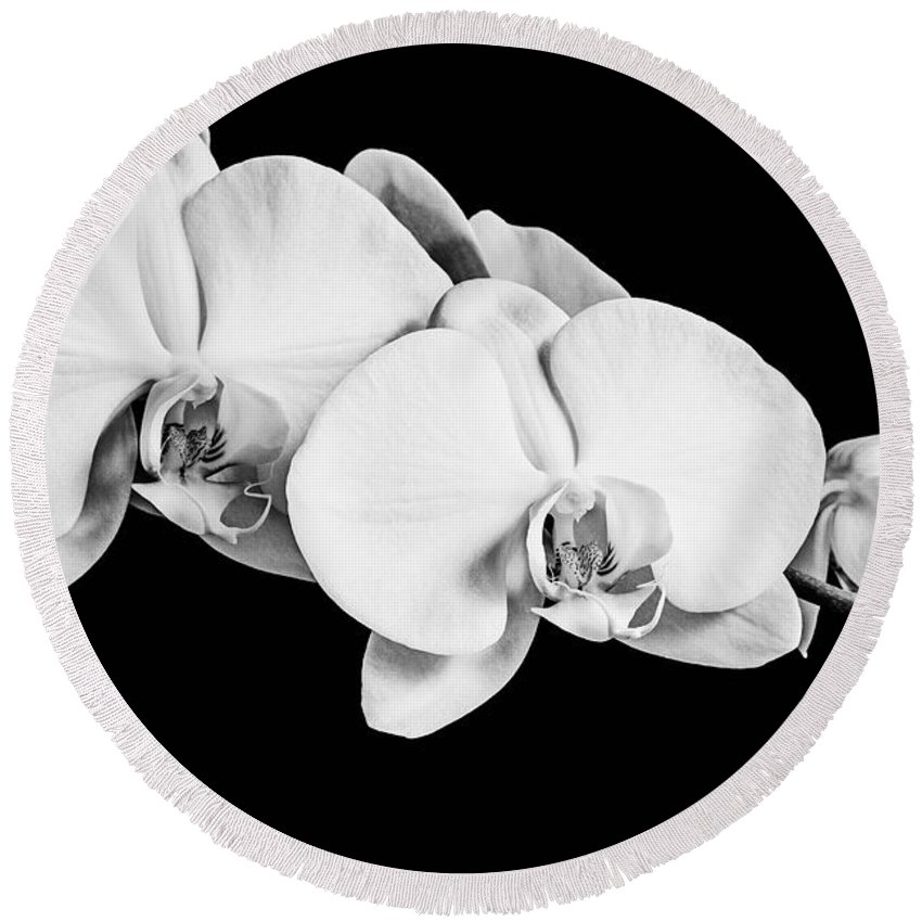 Orchid Round Beach Towel featuring the photograph Orchid - Bw by Scott Pellegrin