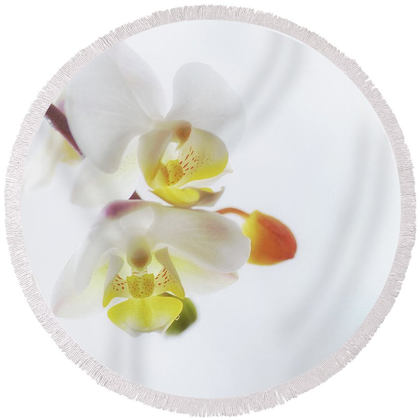 Orchid Round Beach Towel featuring the photograph Orchid Zen by Susan Capuano