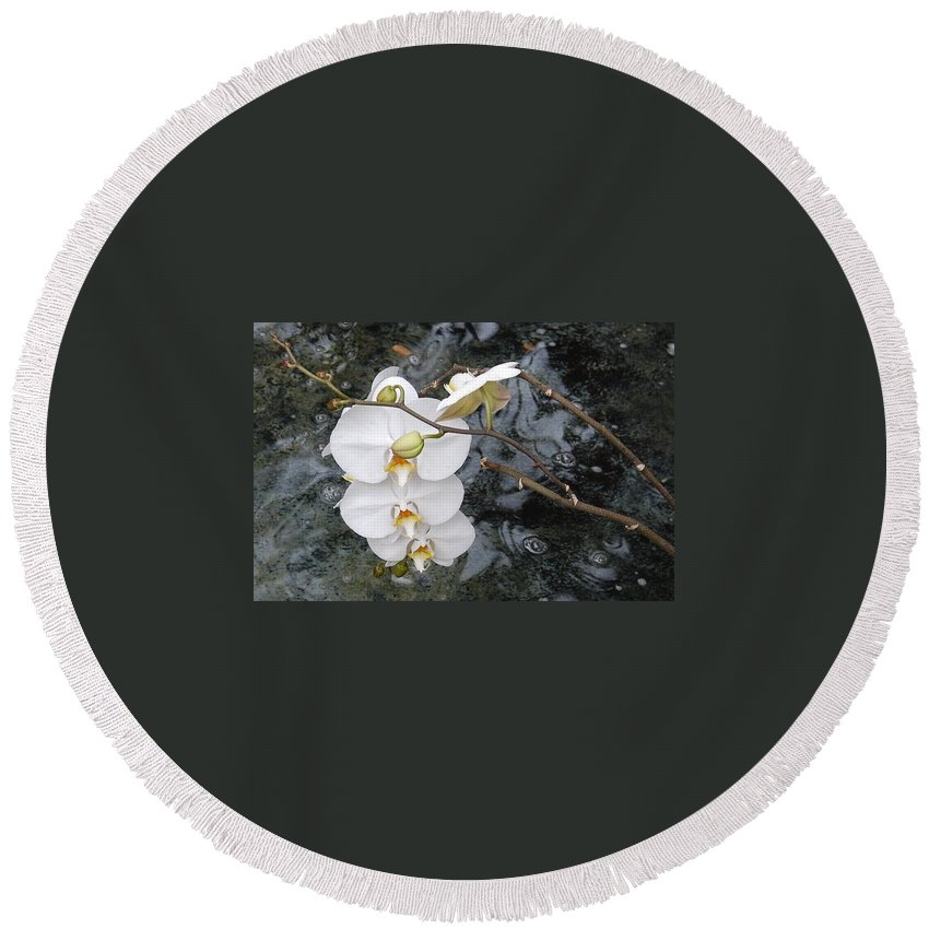 White Orchids Round Beach Towel featuring the photograph Orchids And Water by Linda Benoit
