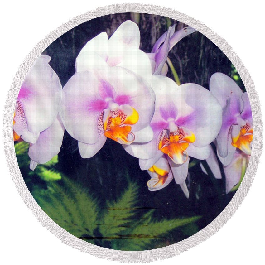 Orchids Round Beach Towel featuring the photograph Orchids Of Hawaii by Dina Holland
