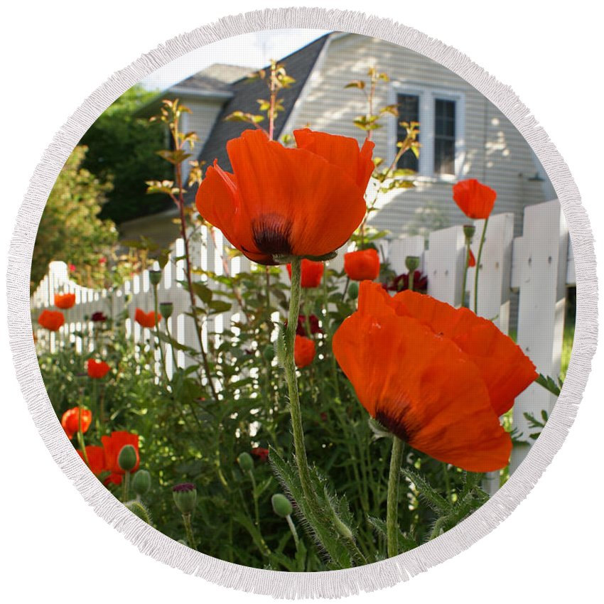 Poppies Round Beach Towel featuring the photograph Oriental Poppies by Heather Coen
