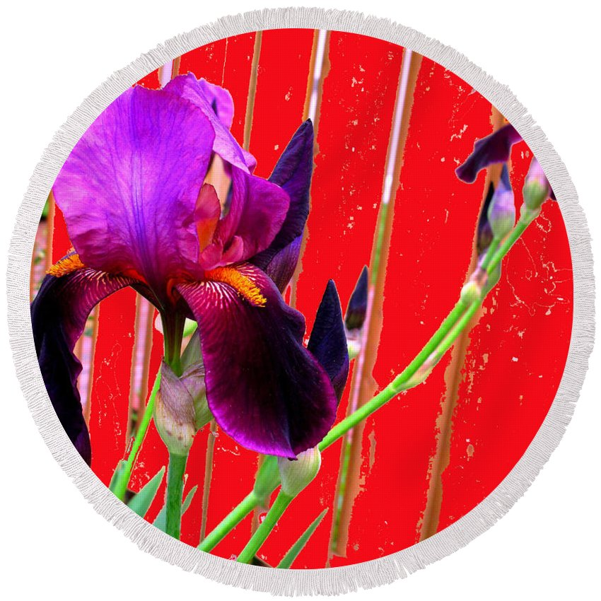 Iris Round Beach Towel featuring the photograph Other Side Of The Fence by Ian MacDonald