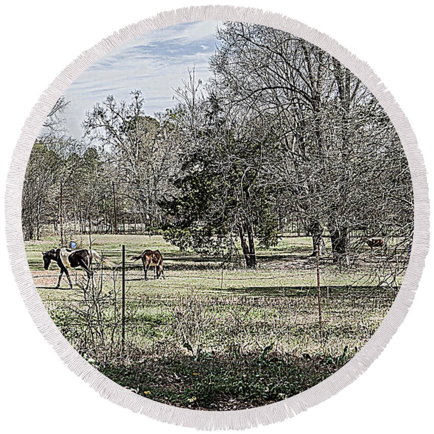 Darrell Round Beach Towel featuring the photograph Out To Pasture by Darrell Clakley
