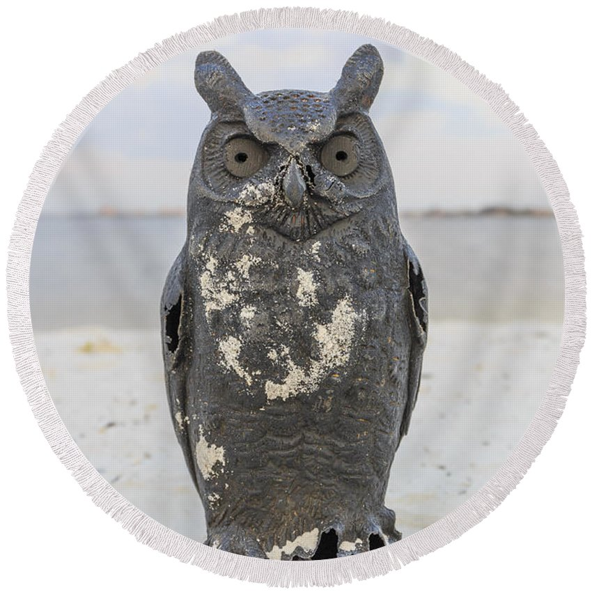 Owl Round Beach Towel featuring the photograph Owl On The Beach by Edward Fielding