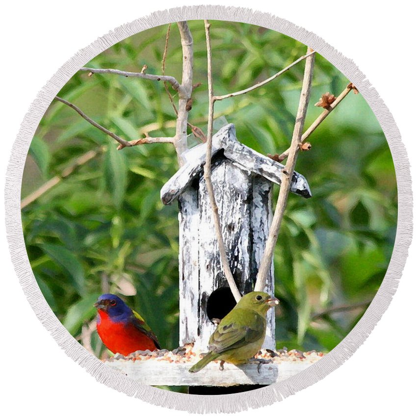 Painted Buntings Round Beach Towel featuring the photograph Painted Buntings by W Gilroy