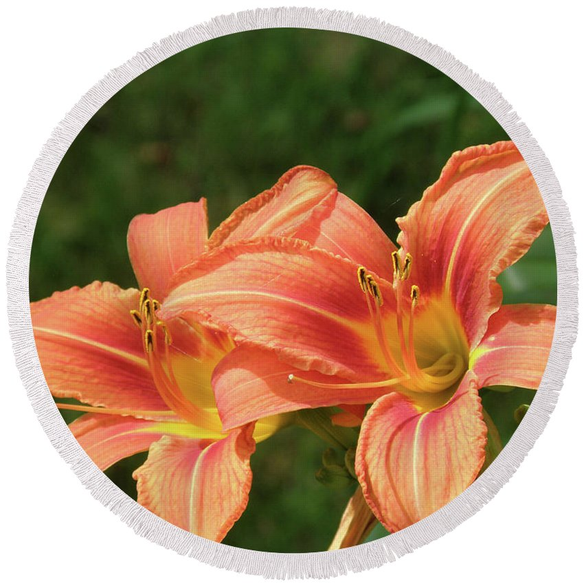 Lily Round Beach Towel featuring the photograph Pair Of Blooming Orange Lilies In A Garden by DejaVu Designs