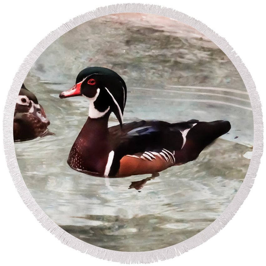 Pair Of Wood Ducks Round Beach Towel featuring the photograph Pair Of Wood Ducks by Cynthia Woods
