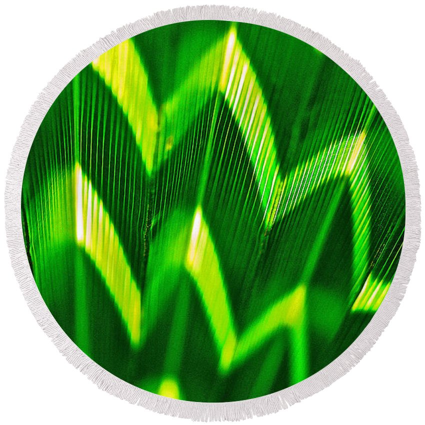 Palm Leaf Round Beach Towel featuring the photograph Palm Abstract by Michael Cinnamond