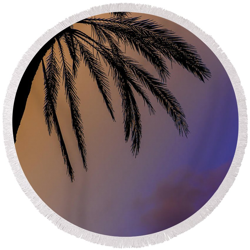 Palm Tree Round Beach Towel featuring the photograph Palm by Joseph Yvon Cote