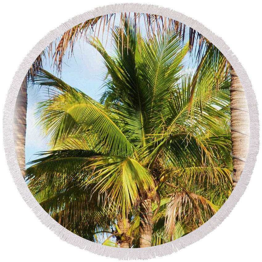 Palm Round Beach Towel featuring the photograph Palm Portrait by Nelson Strong