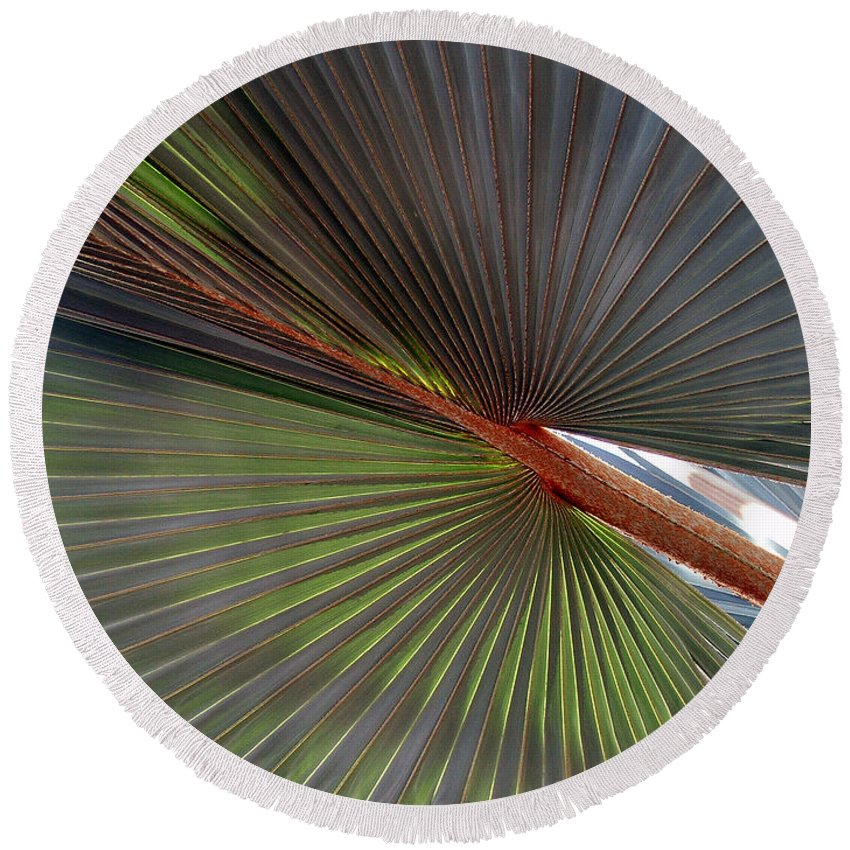 Tree Round Beach Towel featuring the photograph Palm by Robert Meanor
